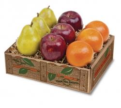 holiday-fruit-medley