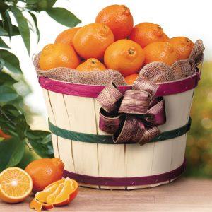 honeybell-grove-basket