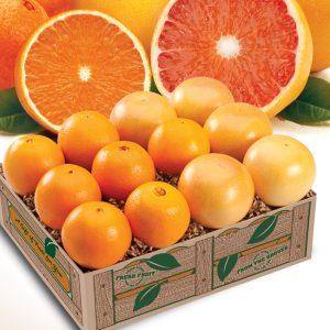 navel-oranges-rr-grapefruit